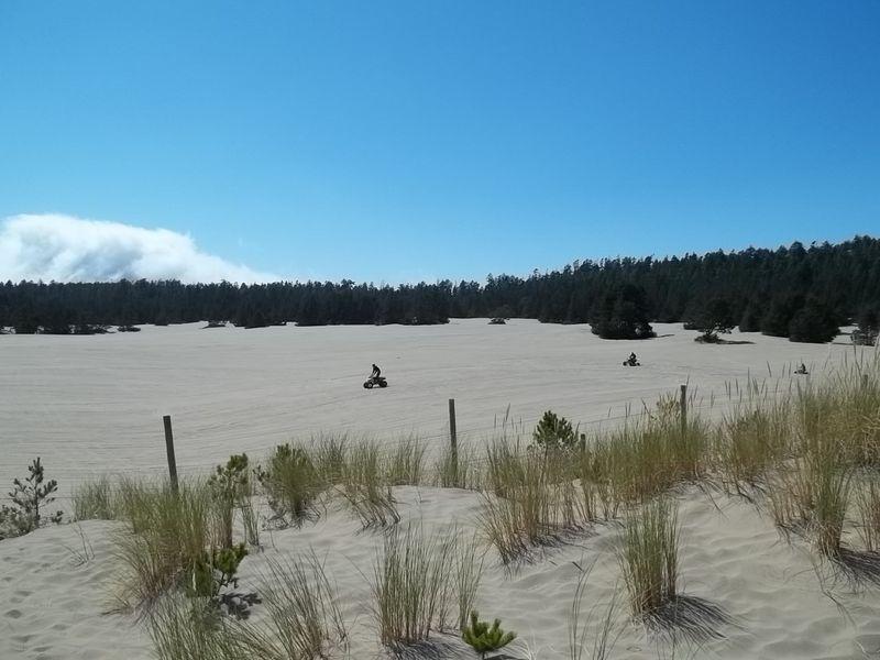 The coast 2011 084