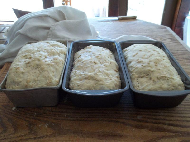 Bread 019